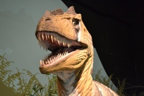 Not just bones, this museum has life like dinosaurs too...like this guy...look at those teeth.