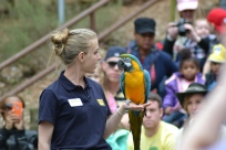 Zoo Atlanta has great shows that teach about all kinds of animals